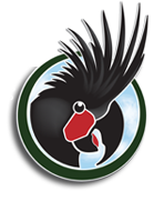 word parrot trust logo 30th